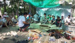 Triệt phá trường gà tại Tiền Giang bắt giữ 31 con bạc