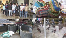 Bắt quả tang 28 người đang tham gia đá gà ăn tiền tại Thanh Hóa