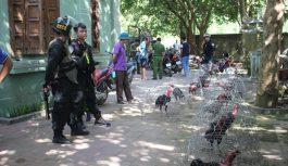 Bắt quả tang 28 đối tượng đánh bạc dưới hình thức đá gà tại Thanh Hóa