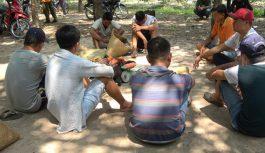 Triệt phá trường gà lớn giữa rừng cao su ở Tây Ninh