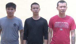 Bắt tạm giam 3 đối tượng tổ chức đá gà tại Kiên Giang