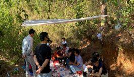 Mật phục, đột kích sới bạc giữa rừng thông trên núi cao tại Lâm Đồng