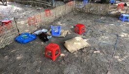 Triệt xóa tụ điểm lắc tài xỉu và đá gà tại Long An