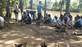 Cảnh sát tỉnh An Giang rượt đuổi 36 người ở sới đá gà