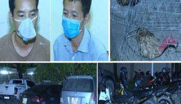 Bắt quả tang 85 người đang sát phạt tại sới đá gà ăn tiền tại Thanh Hóa