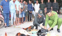 Công an Châu Thành triệt phá tụ điểm đá gà, bắt giữ 25 đối tượng