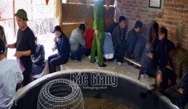 Triệt xóa tụ điểm cá độ bằng hình thức đá gà tại Bắc Giang